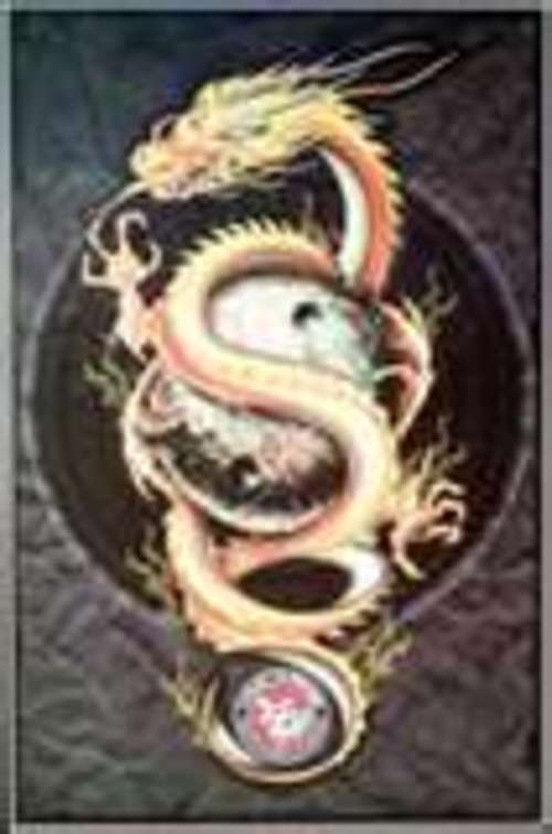Product picture Dragon Tattoo Designs